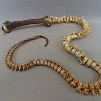 A whip made out of a spine