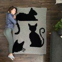 I made a cat blanket!