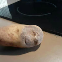 Not sure if I should cook it, throw it away, or rush to hospital?