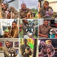 UPS Worker takes pictures with all the doggos on his route