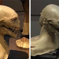 This was the first ever design of Voldemort, which I find far more terrifying