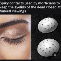 Known as oculist eye caps