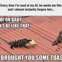 Brought you some toast