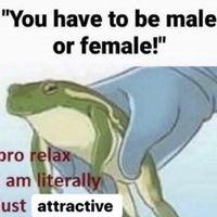 Froggo Fun #497 - Too Cool to Conform