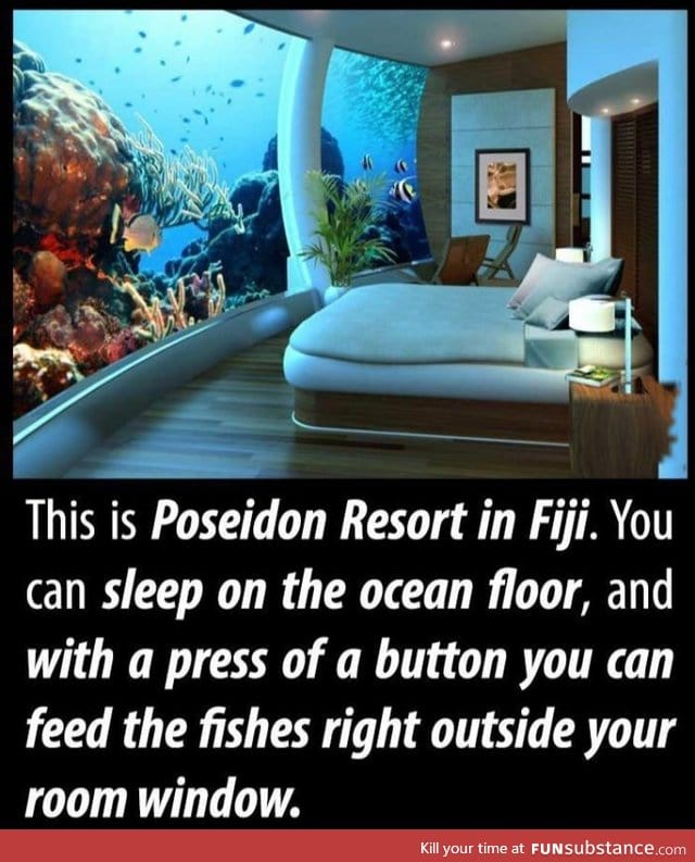 Sleeping with the fishes funsubstance for Sleeping with the fishes