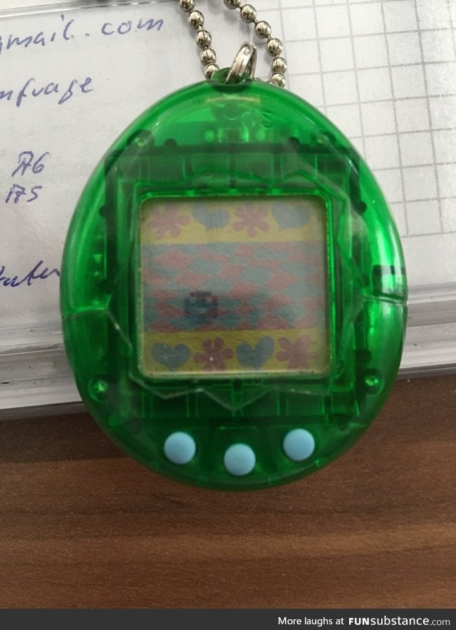"""I'm 32 and my Tamagotchi is still alive"""