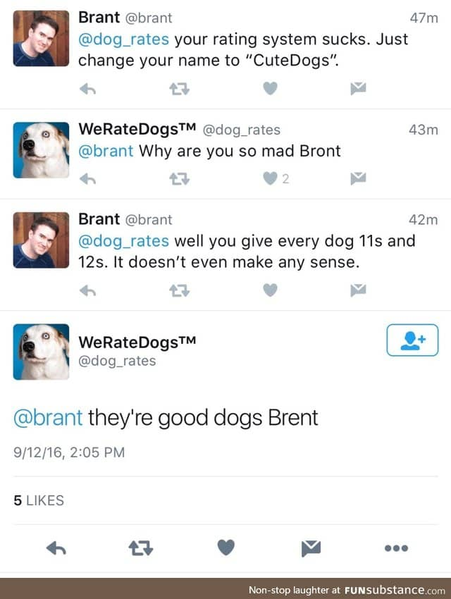 He S A Good Dogs Bront