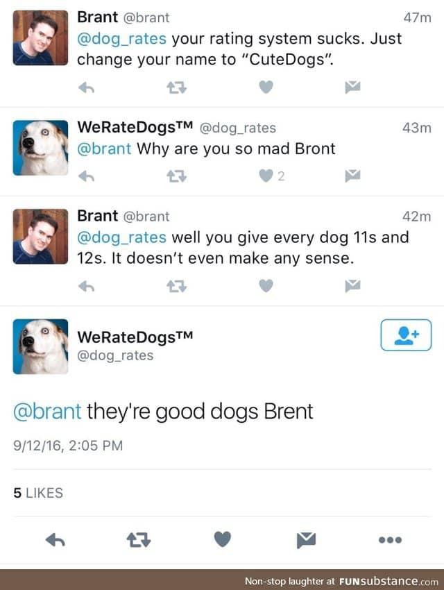 Good Dogs Brint