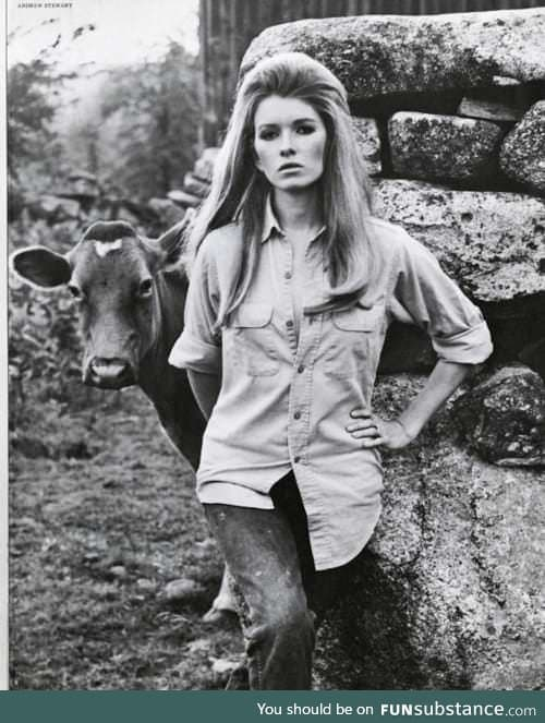 Martha Stewart (right) first got famous as a model