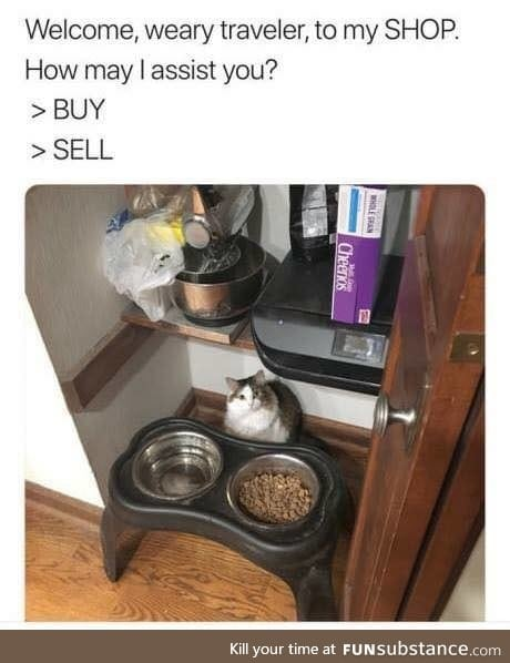 Khajiit has wares, if you have coin