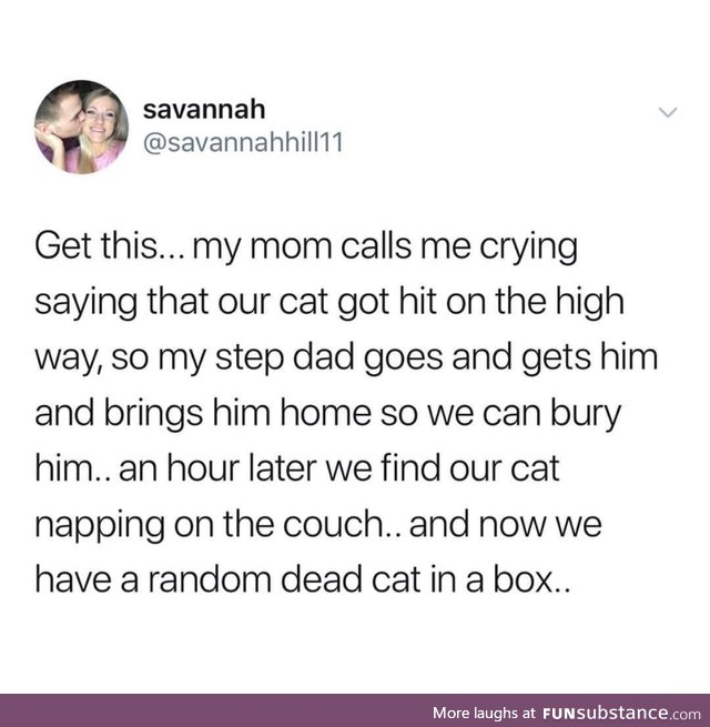 Can't even identify your own cat