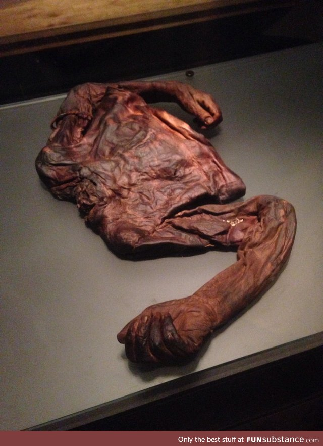 "The ""Old Croghan Man"" Preserved torso of a man found in an Irish bog from 2000+ years ago"