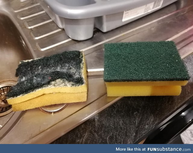 There's no better feeling than replacing a dirty sponge