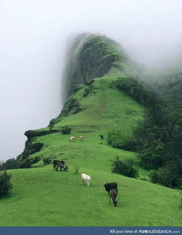 Way to heaven . Duke's Nose Lonavala Mumbai, India