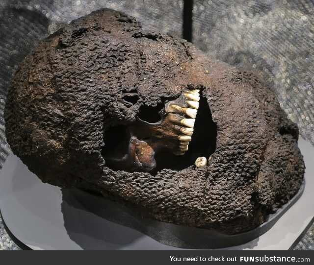 Skull still in chainmail from Battle of Visby, 1361