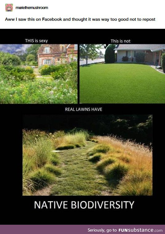 Stop mowing your lawn, basically...?