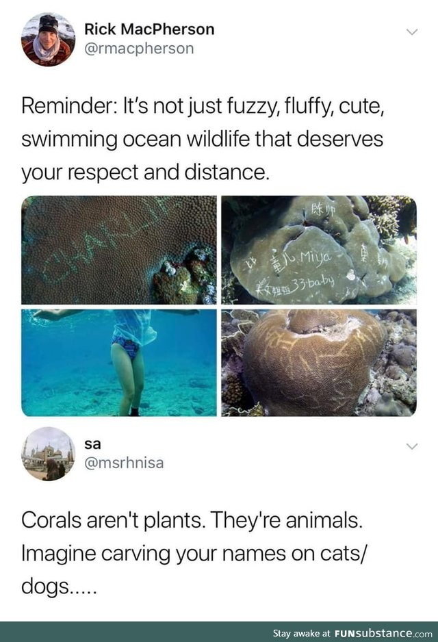 Humans are trash