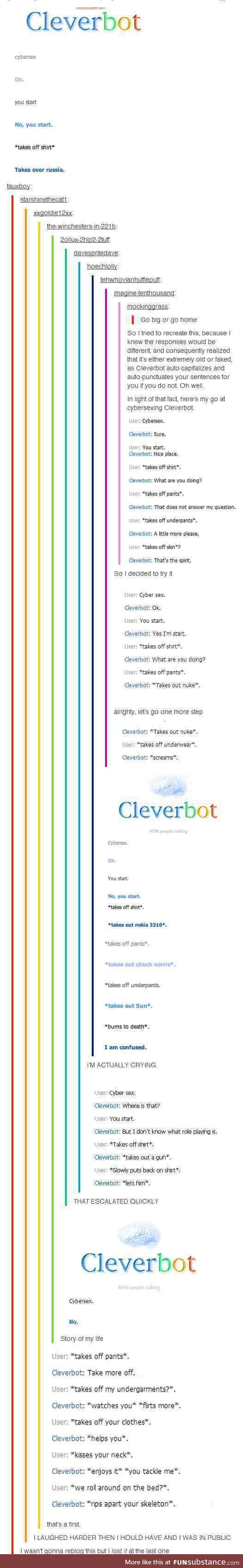 Cleverbot Cybersex. (You will need armour, I think. And something to bite down on.)
