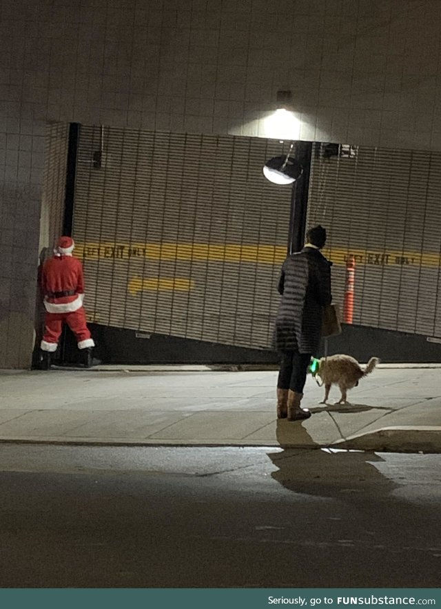 I captured the essence of San Francisco. Drunk santa peeing while an animal shits on the