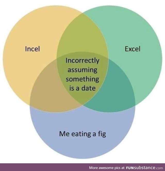 Excel: Invite e-girl to eat fig - FunSubstance