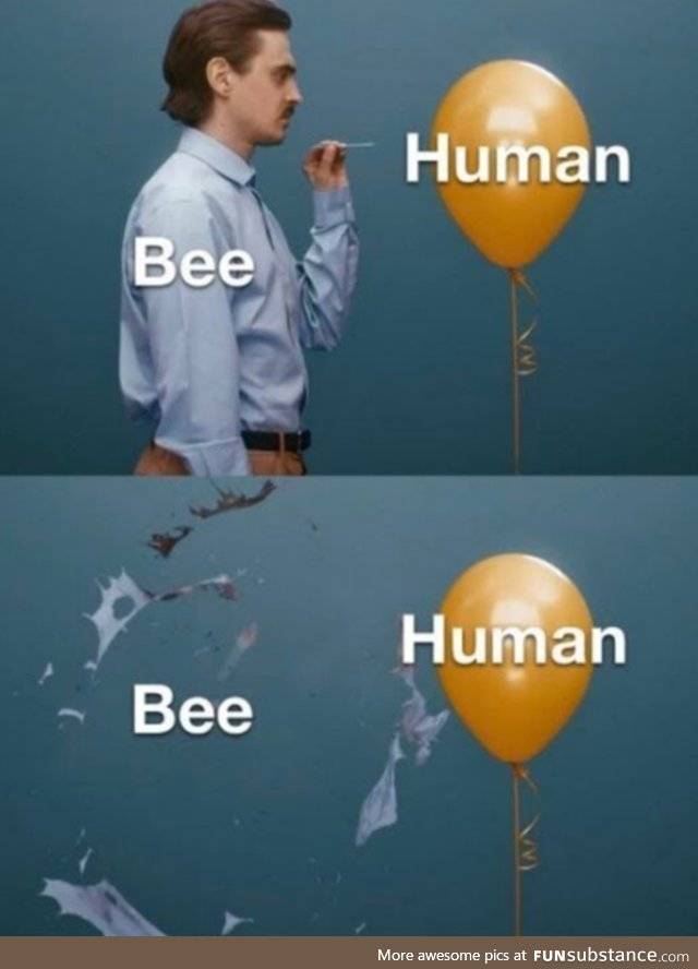 Bees, basically