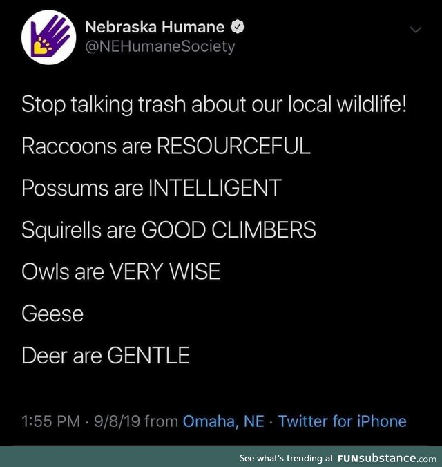 Respect our wildlife