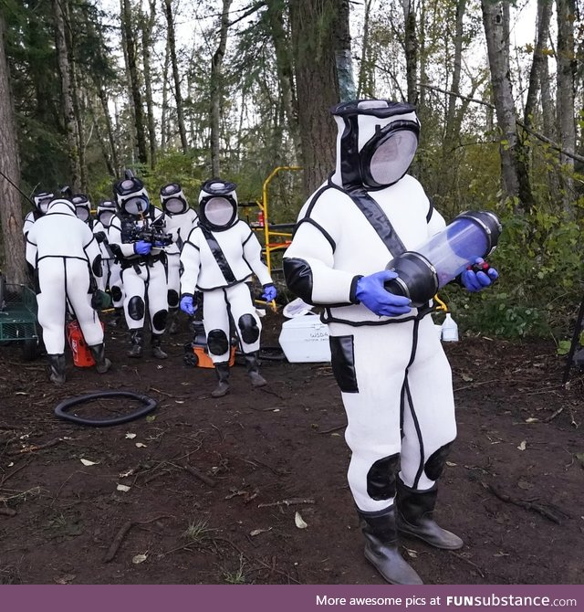 Washington State Murder Hornet eradication team 2020