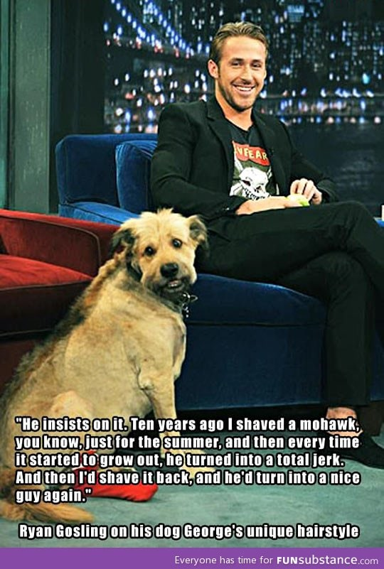 Ryan gosling on his dog's unique hairstyle