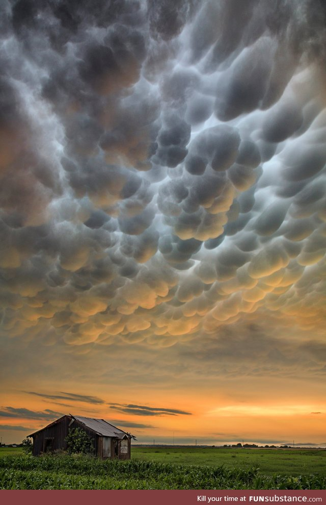 Mammatus clouds at sunset over parts of Texas