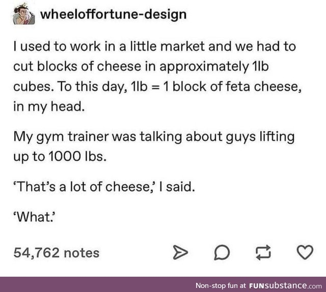 Cheese wheels on the brain