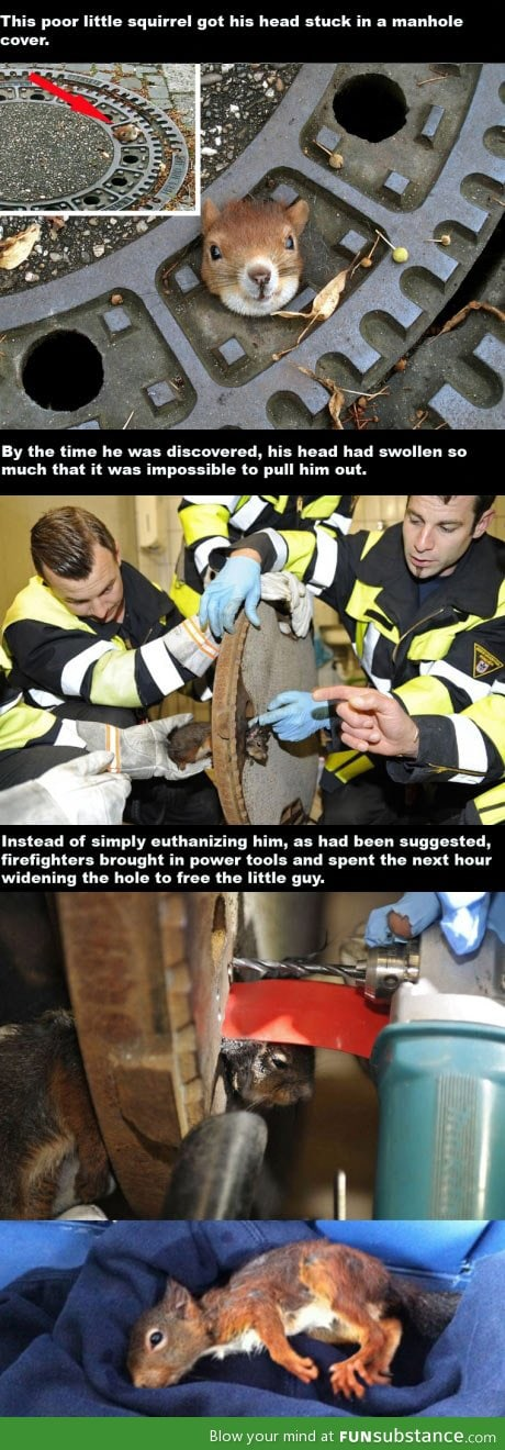 Firefighters being awesome