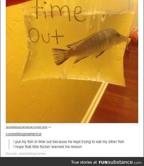 Bad Fishy!