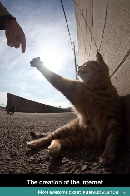 The creation of the internet