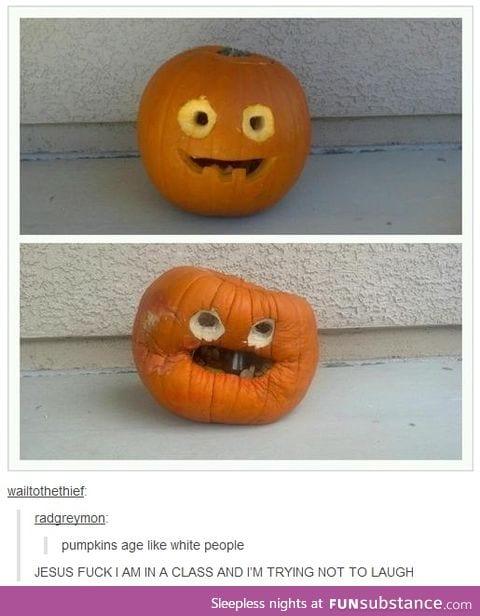 Look at that granny pumpkin.
