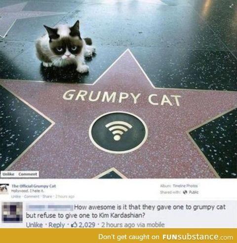 Because grumpy cat deserves it.