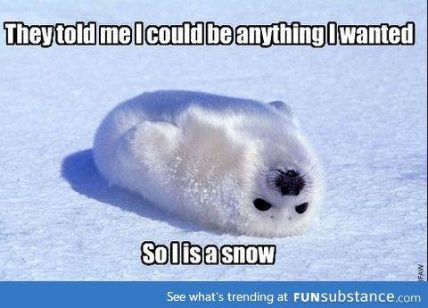 I is snow