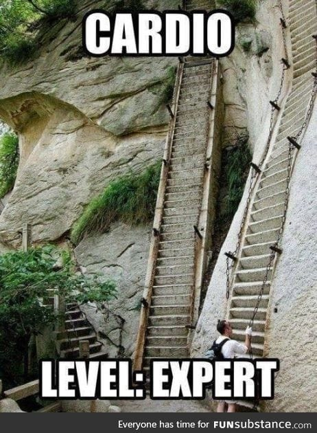 For cardio experts