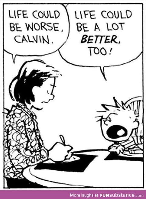 Calvin and Hobbes. They made me wise at a young age