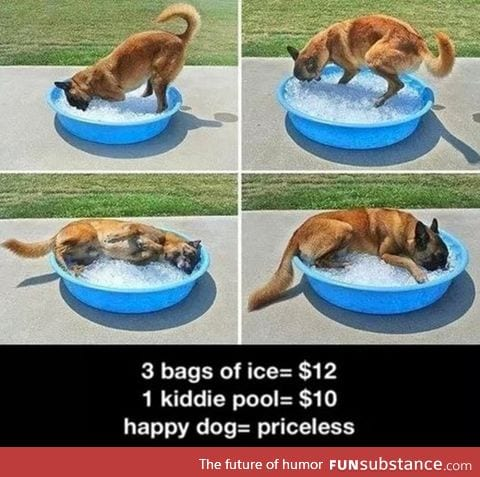 The low price of happiness