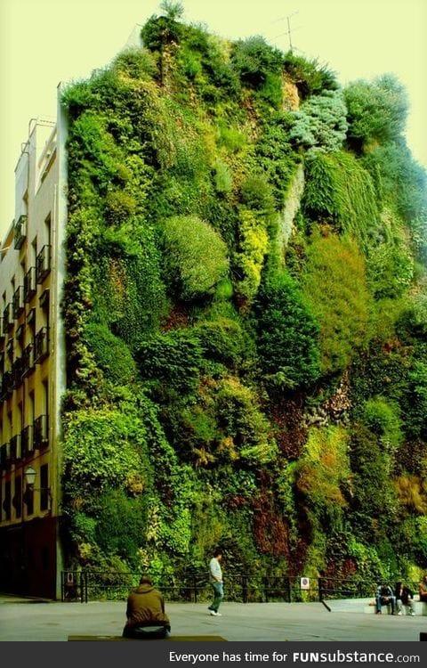 Vertical garden in Madrid, Spain
