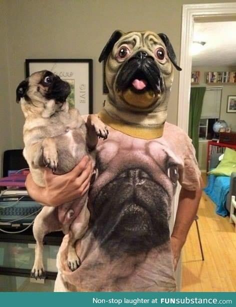 the dog kinda look terrified