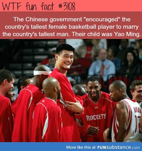 How Yao Ming was created