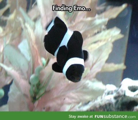 Nemo's Having A Rough Adolescence