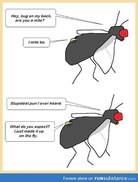 This joke bugs me