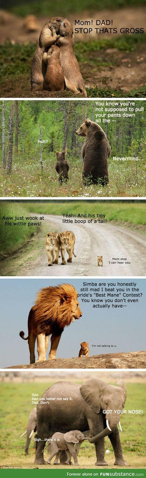 The animal kingdom and their kids