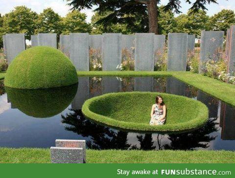Interesting landscaping