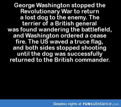 George Washington stopped the Revolutionary War to return a lost dog to the enemy