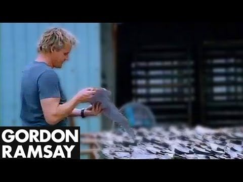 Gordon Ramsey was doused in gasoline while investigating the illegal shark fin market