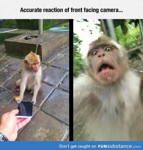 Front facing camera reaction
