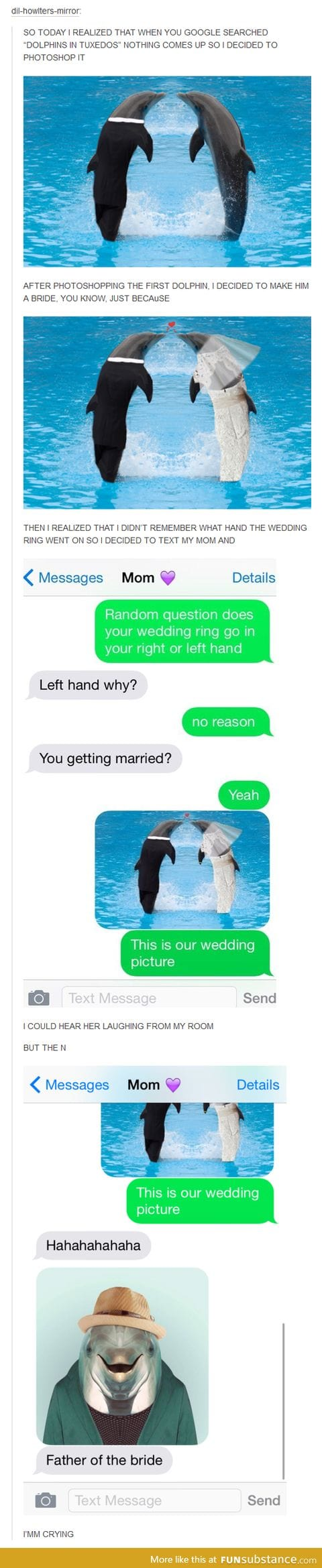 Dolphin in tux :D